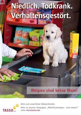Wuehltischwelpen_Plakat_2014