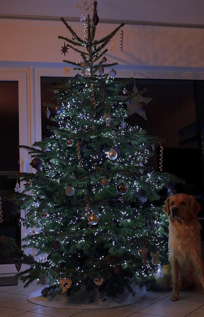 Weihnachten_2016